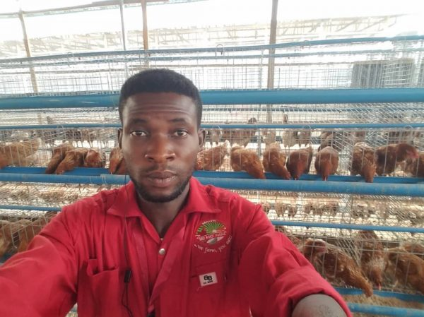 Buy Live Chicken And Fish At Awka Nigeria