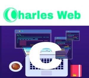 Affordable Web Design Services In Lagos Nigeria